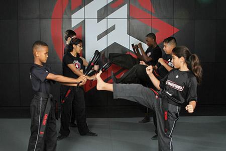 Martial Arts 77406