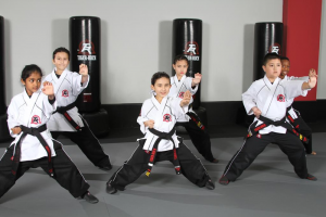 Katy TX Karate Schools
